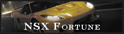 NSX FORTUNE